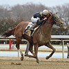Sir Winston - AOC, Aqueduct, January 31, 2020<br /> Coglianese Photos/Chelsea Durand