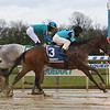 Brooklyn Strong wins the 2020 Remsen Stakes at Aqueduct<br /> Coglianese Photos/Susie Raisher