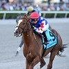 Mr Freeze wins the 2020 Gulfstream Park Mile Stakes<br /> Coglianese Photos/Ryan Thompson
