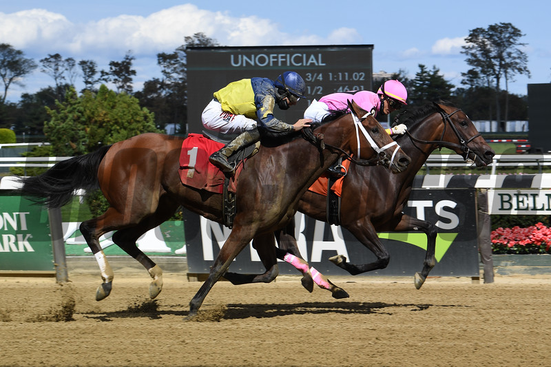 Impazible Donna wins a maiden special weight Sunday, October 4, 2020 at Belmont Park. Photo: Coglianese Photos