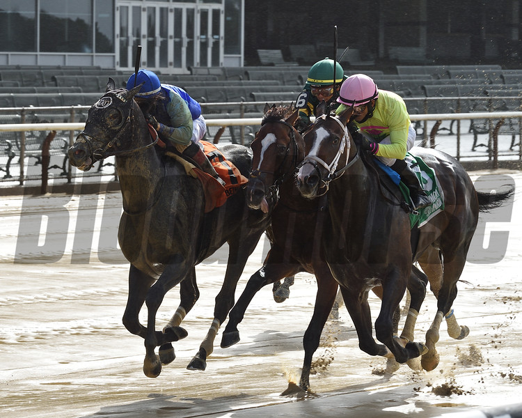 Liam's Pride wins the Gold Fever Stakes Friday, July 10, 2020 at Belmont Park. Photo: Coglianese Photos/Chelsea Durand