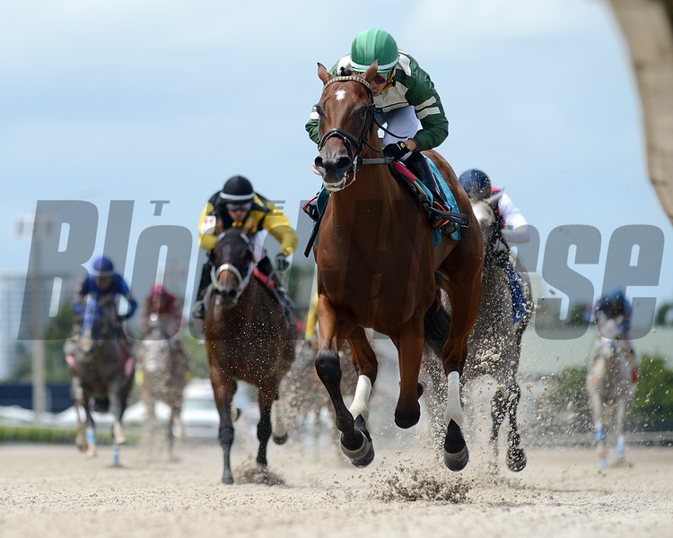 Breeze On By - Maiden Win, Gulfstream Park, July 12, 2020<br /> Coglianese Photos/Ryan Thompson