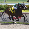 Poppy's Pride - Maiden Win, Gulfstream Park, August 27, 2020<br /> Coglianese Photos/Ryan Thompson