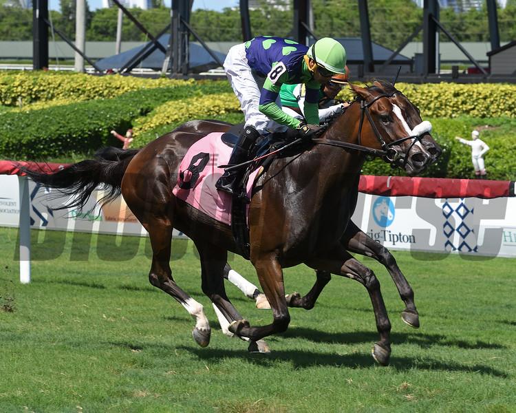 Lady Boss - Maiden Win, Gulfstream Park, July 26, 2020<br /> Coglianese Photos/Ryan Thompson