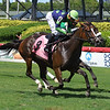 Lady Boss - Maiden Win, Gulfstream Park, July 26, 2020<br /> Coglianese Photos/Ryan Thompson