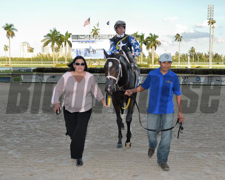 Chance It wins the 2020 Mucho Macho Man Stakes at Gulfstream Park. Photo: Coglianese Photos