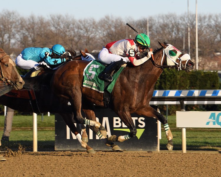 Share the Ride wins the Fall Highweight Handicap Sunday, November 29, 2020 at Aqueduct. Photo: Coglianese Photos/Janet Garaguso