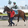 Breeze On By - Maiden Win, Gulfstream Park, July 12, 2020<br /> Coglianese Photos/Ryan Thompson
