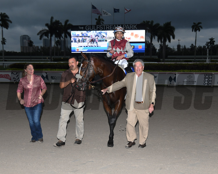 Tiz the Law wins the 2020 Holy Bull Stakes at Gulfstream Park<br /> Coglianese Photos