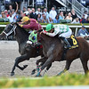 Noble Drama wins the 2020 Sunshine Millions Classic at Gulfstream Park<br /> Coglianese Photos/Derbe Glass