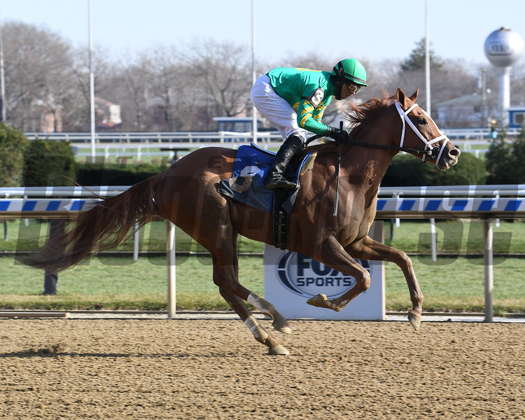 Poncho Song wins maiden claiming December 3, 2020 at Aqueduct. Photo: Coglianese Photos