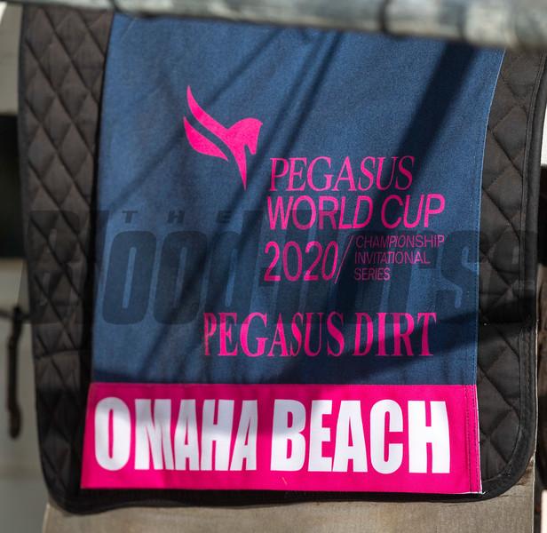 Omaha Beach - Morning - Gulfstream Park - 011920. Photo: Joe DiOrio