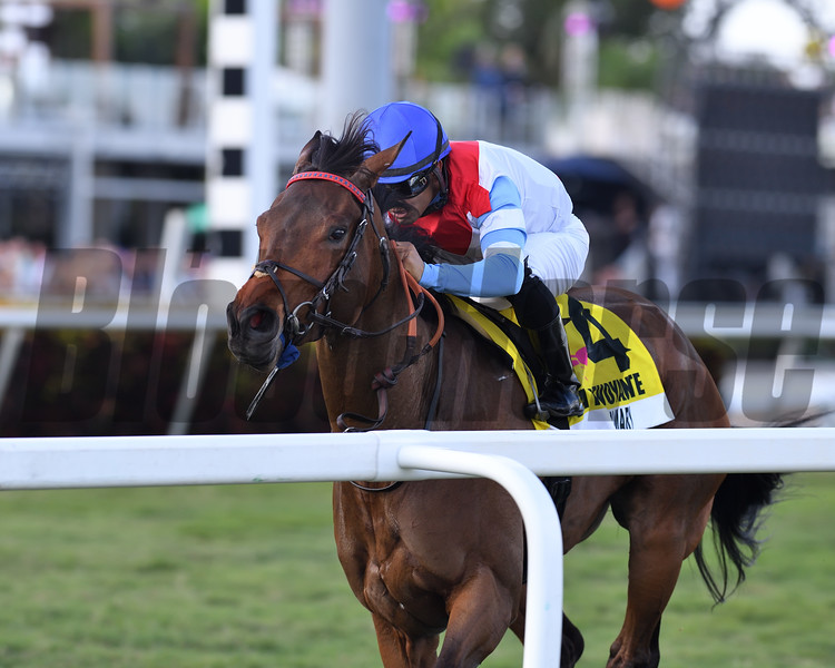 Mean Mary wins the 2020 La Prevoyante Stakes at Gulfstream Park<br /> Coglianese Photos/Derbe Glass