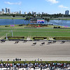 Scene at 2020 Pegasus World Cup Invitational at Gulfstream Park. Photo: Coglianese Photos