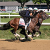 Country Grammer - Morning - Saratoga - 080120<br /> Coglianese Photos