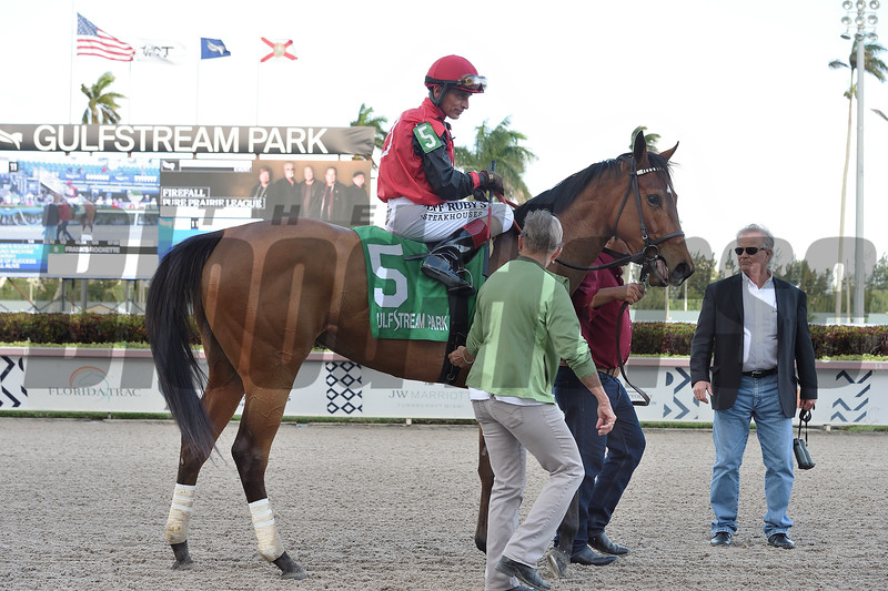 Frank's Rockette wins the 2020 Any Limit Stakes at Gulfstream Park. Photo: Coglianese Photos/Ryan Thompson