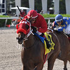 Letruska wins the 2020 Added Elegance at Gulfstream Park   <br /> Coglianese Photos/Ryan Thompson