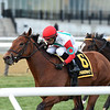 Turned Aside wins the 2020 Aqueduct Turf Sprint Championship Stakes<br /> Coglianese Photos/Chelsea Durand