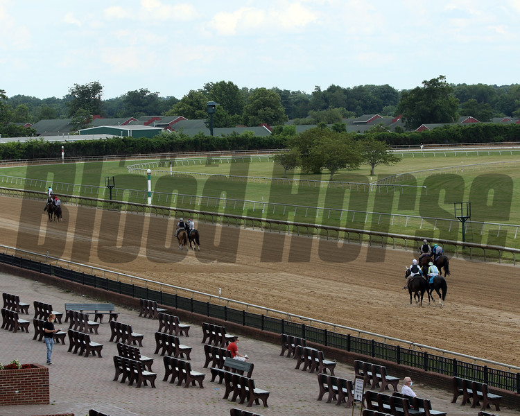 Social Distancing at Delaware Park on July 11, 2020 prior to the 24th Running of the Robert G. Dick Memorial (GIII). Photo By: Chad B. Harmon