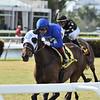 Micheline wins the 2020 Honey Ryder Stakes at Gulfstream Park<br /> Coglianese Photos/Ryan Thompson
