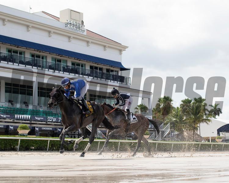 Boerne wins the 2020 Azalea Stakes at Gulfstream Park<br /> Coglianese Photos/Ryan Thompson