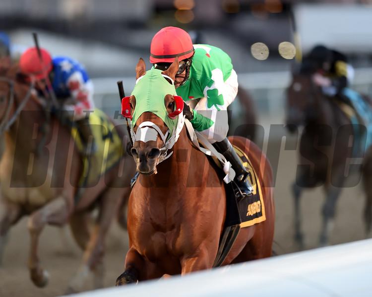 Mischevious Alex wins the 2020 Gotham Stakes at Aqueduct<br /> Coglianese Photos/Chelsea Durand