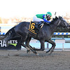 Water White wins the 2020 Busher Stakes at Aqueduct<br /> Coglianese Photos/Viola Jasko