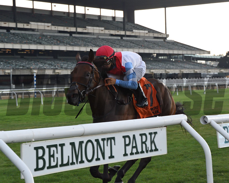 Mean Mary wins the 2020 New York Stakes at Belmont Park<br /> Coglianese Photos/Chelsea Durand