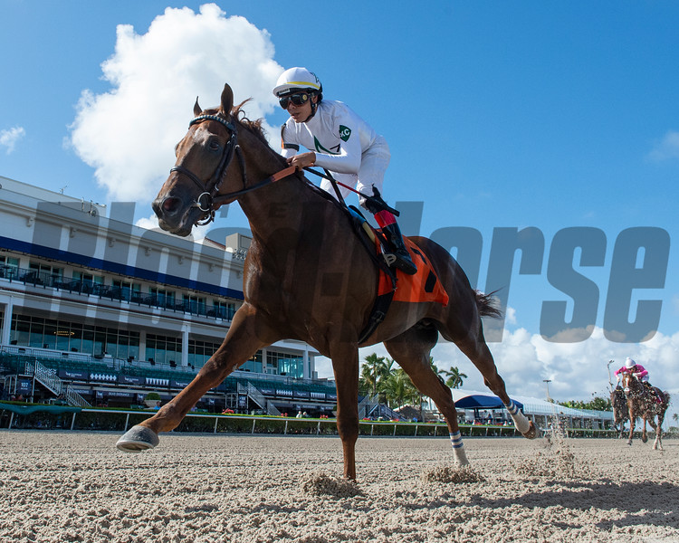Extraordinary - Maiden Win, March 14, 2020<br /> Coglianese Photos/Ryan Thompson