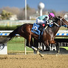 Return the Ring - Maiden Win, Aqueduct, November 28, 2020<br /> Coglianese Photos