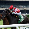 Instilled Regard wins the 2020 Fort Marcy Stakes at Belmont Park.<br /> Coglianese Photos/Chelsea Durand