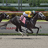 Awesome Gerry - Maiden Win, Gulfstream Park, July 19, 2020<br /> Coglianese Photos/Lauren King