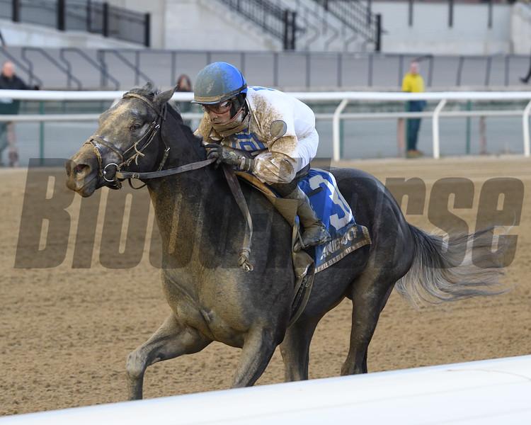 Montauk Traffic wins 2020 Jimmy Winkfield Stakes at Aqueduct Racetrack. Photo: Coglianese Photos/Joe Labozzetta
