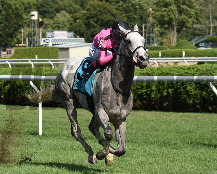Jack and Noah wins the 2020 Mahony Stakes at Saratoga<br /> Coglianese Photos