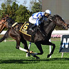 Luck Money wins the 2020 Zagora Stakes at Belmont Park<br /> Coglianese Photos