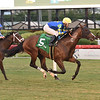Tarantino - AOC, Gulfstream Park, December 11, 2020<br /> Coglianese Photos/Lauren King