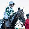Sole Volante wins the 2020 Sam F. Davis Stakes at Tampa Bay Stakes. Photo: Joe DiOrio