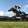 Halladay wins the 2020 Fourstardave Handicap at Saratoga<br /> Coglianese Photos
