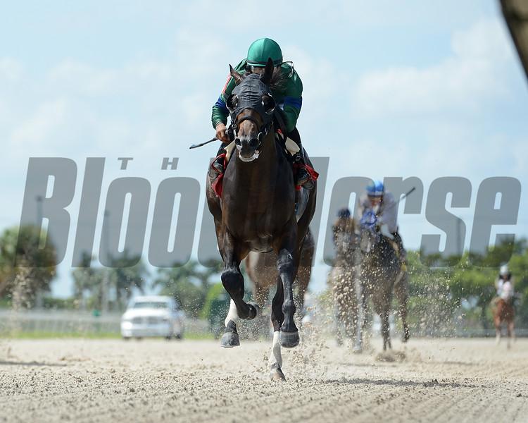 Slashing - Maiden Win, Gulfstream Park West, October 7, 2020<br /> Coglianese Photos/Ryan Thompson