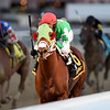 Mischevious Alex wins the 2020 Gotham Stakes at Aqueduct<br /> Coglianese Photos/Chelsea Durand
