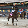 True Timber wins the 2020 Cigar Mile at Aqueduct<br /> Coglianese Photos/Chelsea Durand