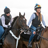 Tax works on January 18, 2020 at Palm Meadows with Carol Fiser up<br /> Joe DiOrio Photo
