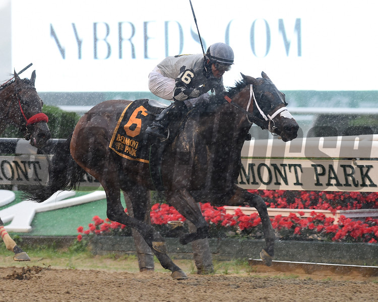 Victim of Love wins the 2020 Vagrancy Stakes at Belmont Park<br /> Coglianese Photos