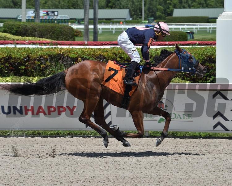 Queen Arella - Maiden Win, May 29, 2020<br /> First winner for Speightster    <br /> Coglianese Photos/Lauren King