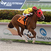 Heart of God - Maiden Win, Gulfstream Park, July 23, 2020<br /> Coglianese Photos/Ryan Thompson