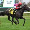 Myhartblongstodady wins the 2020 Ticonderoga Stakes at Belmont Park<br /> Coglianese Photos/Janet Garaguso