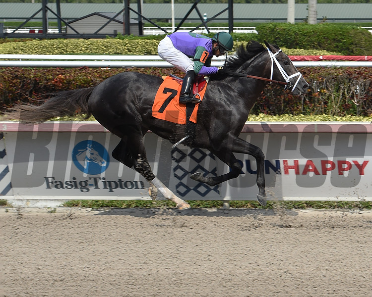 Colonel Liam wins a maiden special weight Saturday, April 11, 2020 at Gulfstream Park. Photo: Coglianese Photos/Lauren King
