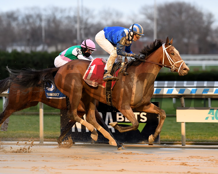 Malathaat wins the 2020 Demoiselle Stakes at Aqueduct  <br /> Coglianese Photos