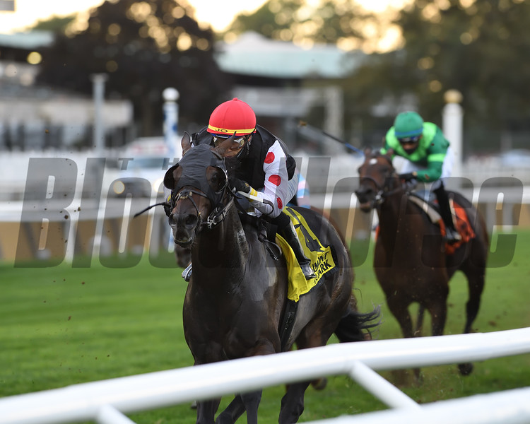 Wet Your Whistle wins the Belmont Turf Sprint Invitational Stakes Sunday, October 4, 2020 at Belmont Park. Photo: Coglianese Photos/Chelsea Durand