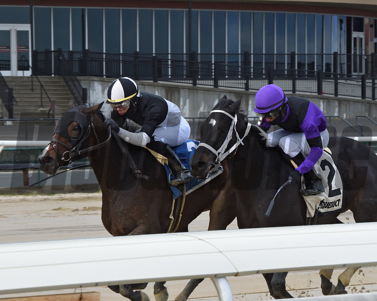 Sharp Starr wins the 2020 Go for Wand Handicap at Aqueduct<br /> Coglianese Photos/Chelsea Durand